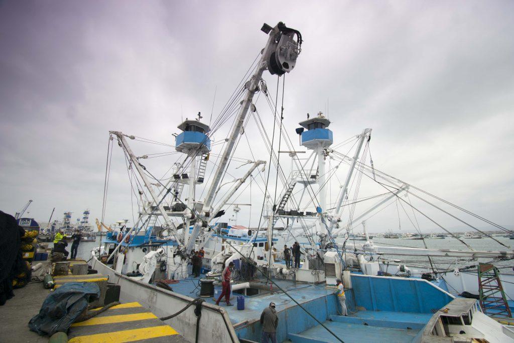 En Manabí inician 72 días de veda para barcos atuneros