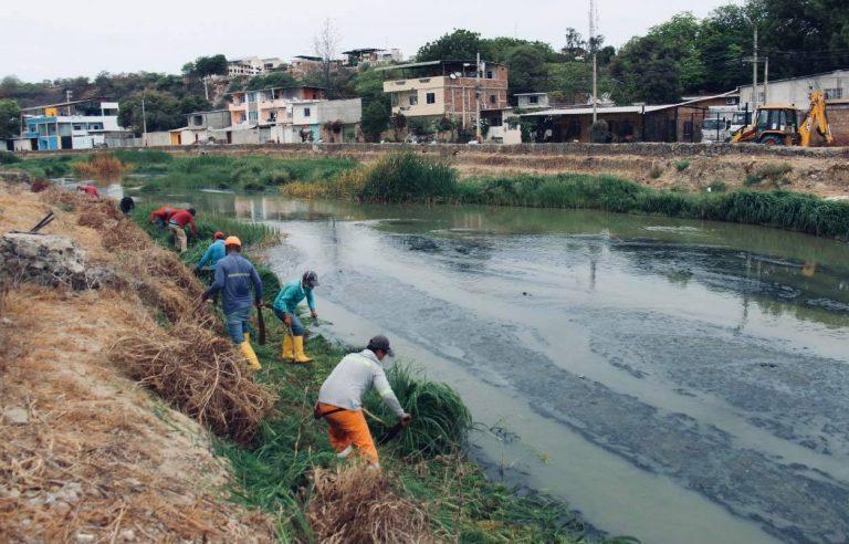 Manta. Limpian río y sus alrededores para prevenir inundaciones durante el invierno